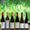 Georgian wine tasting package Dakishvili | Ghvino.shop